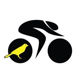 Canary Challenge App