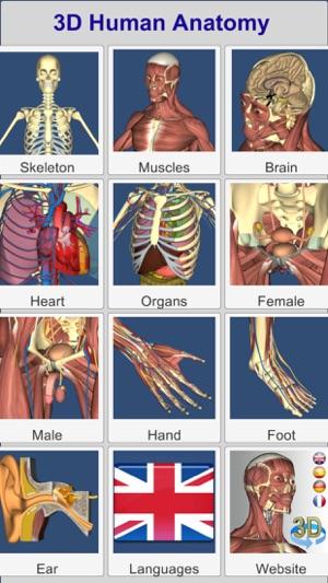3D Anatomy im App Store