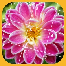 Activities of Jigsaw Puzzle - Flower