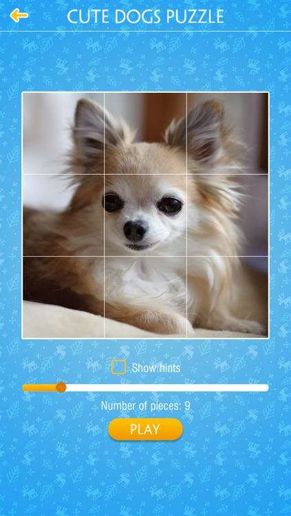 Cute Dogs Jigsaw Puzzles