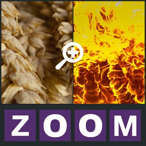 Zoom Quiz - Guess what is the picture, new fun puzzle!