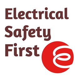 Home Electrical Safety Check