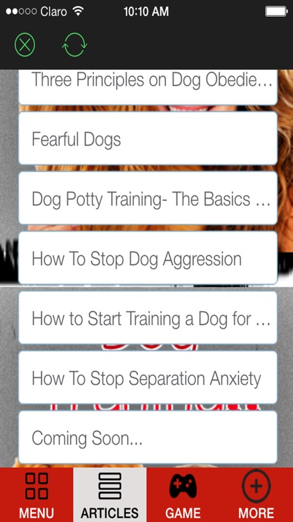 'A How to Train a Puppy and Stop Dog Barking With Great training classes and Amazing Tips