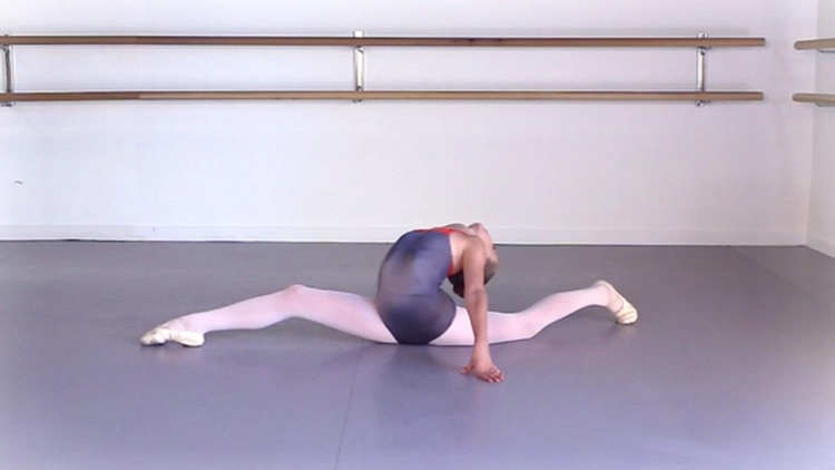 Ballet Elasticity screenshot-4