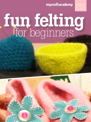 Fun Felting for Beginners-ipad-0