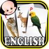 Kids safari jungle wild animals zoo & birds flashcards for preschool kindergarten baby
