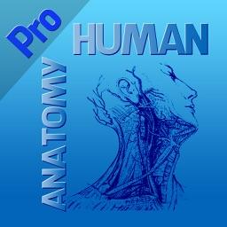 Human Anatomy Pro 2014