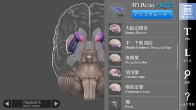 3D Brainのおすすめ画像4