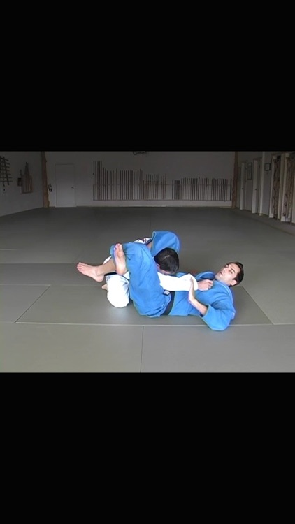 Brazilian Jiu Jitsu: Blue Belt Requirements screenshot-4