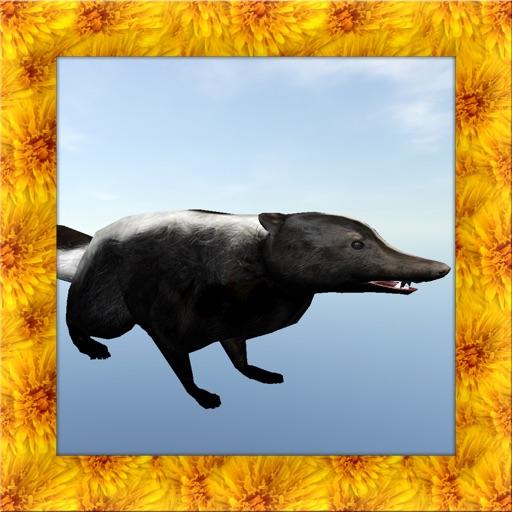 Skunk Simulator 3D