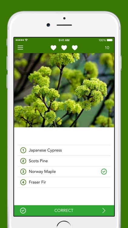 Trees 2 PRO - The Field Guide by NATURE MOBILE screenshot-3