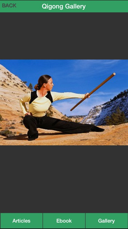 Qigong Guide - Everything You Need To Know About Qi Gong ! screenshot-3