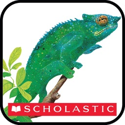 Scholastic First Discovery: The Jungle