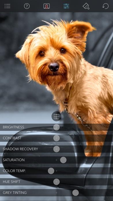 Screenshot for Color Splash in Switzerland App Store