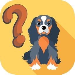 Dog Breeds Trivia Quiz for Dogs Lovers
