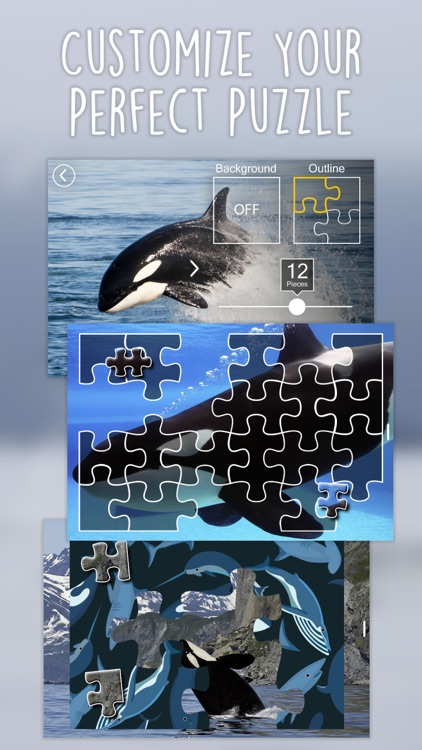 Orca Puzzles for Kids Jigsaw Wonder Edition