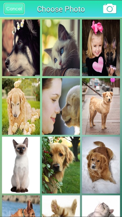 Pet Wallpapers HD Free: Set Awesome Homescreen for iPhone screenshot two