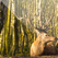 Easy Deer Hunting Calls - Finest Deer Hunting Calls which Every Deer Hunter Must Use