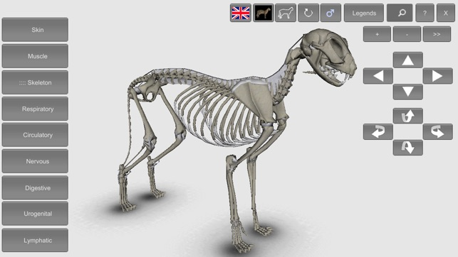 ‎3D Cat Anatomy on the App Store