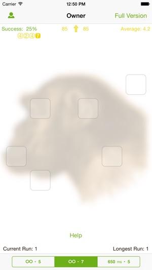 Ape Test Lite