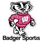 Badger Sports icon