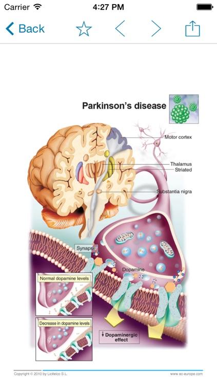 Miniatlas Central Nervous System