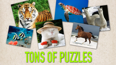 Pop Puzzle - Kid's favorite puzzle game! screenshot two