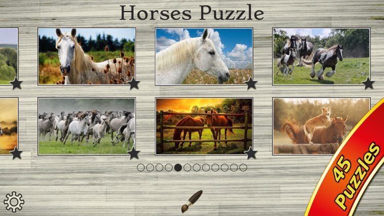 Mighty Horses - Real Horse Picture Puzzle Games for kids screenshot-4