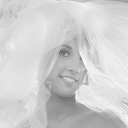 Wedding Hot Shots Lenses by David Ziser