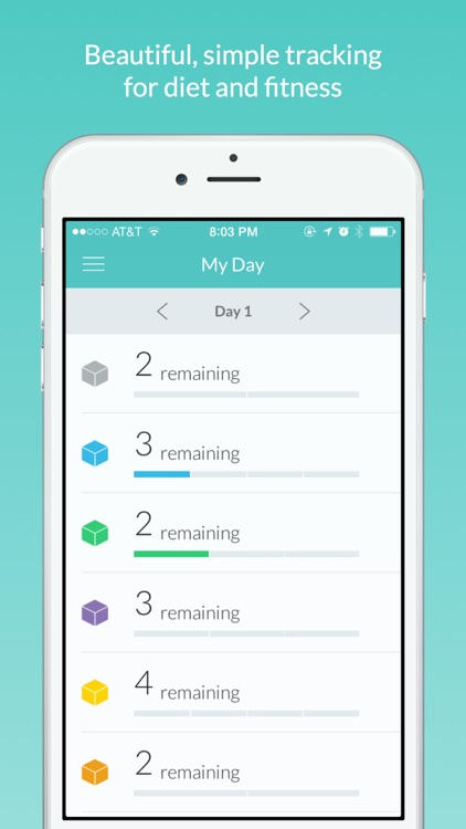 daily fitness tracker by fatchicken studios