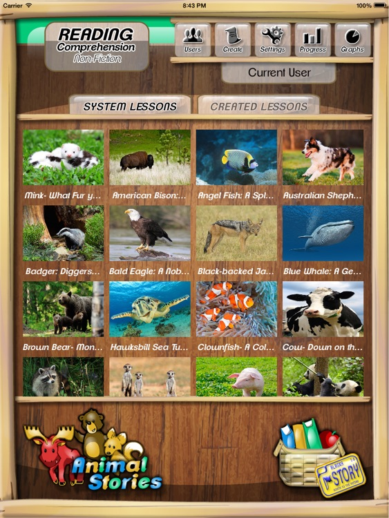 Reading Comprehension - Grades Two and Three