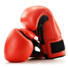 Boxing Guide - How To Learn Boxing - Bhavna Jogi
