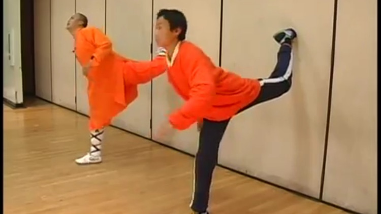 Shaolin Kung Fu Training screenshot-3