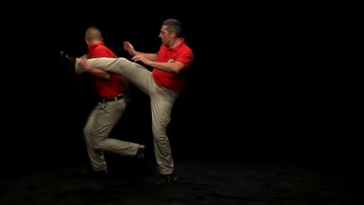 Krav Maga - Basic Techniques screenshot-4