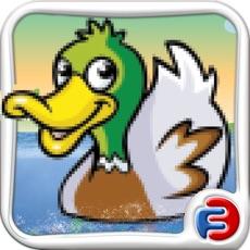 Activities of Duck Dive: Flappy Prey Bird Fishing