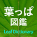 葉っぱ図鑑 - Leaf Dictionary -