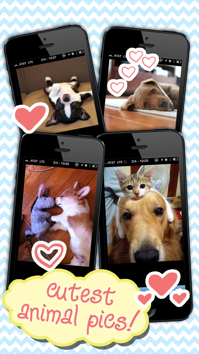 Download 2cute for Pc