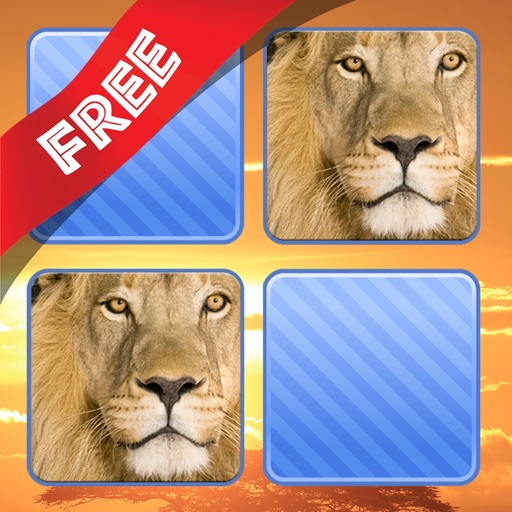 Free Memo Game Wild Animals Photo