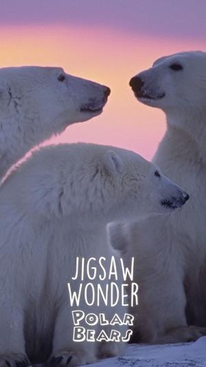 Puzzle Wunder Eisbär Puzzles für Kinder Screenshot
