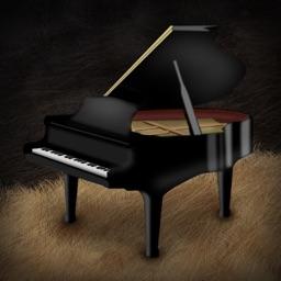 Dog Piano