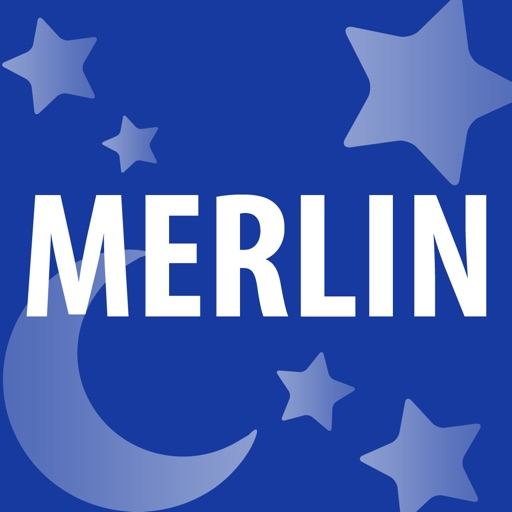 Merlin - Projektmanagement