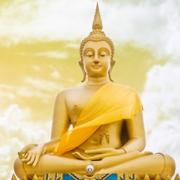 500+ Buddha Quotes - With beautiful wallpapers
