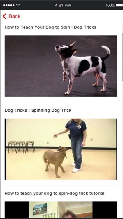 Dog Obedience Training - Learn How to Train Your Dog screenshot-4