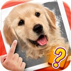 Scratch Quiz - Can You Find The Secret Image? icon