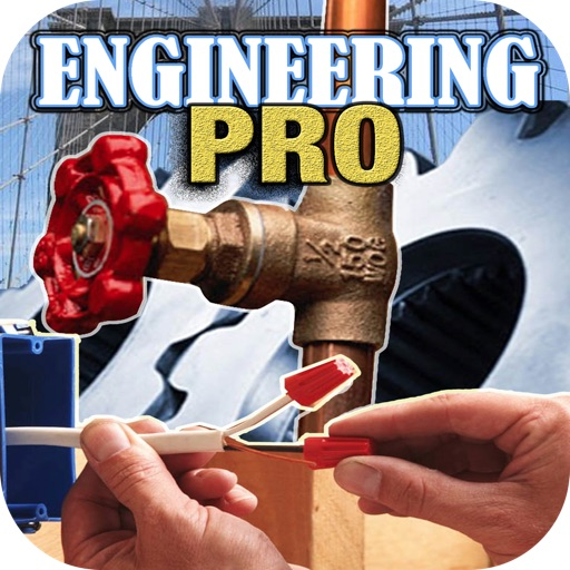 Engineering Professional