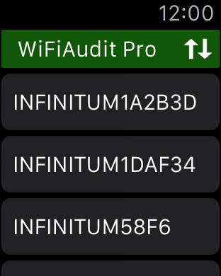 WiFiAudit Pro - WiFi Passwords Screenshot