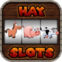 Codes for Hay Slots Hack