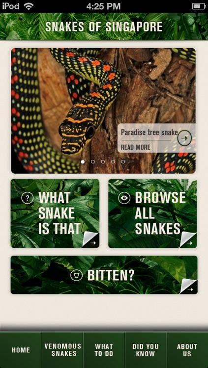 SG Snakes