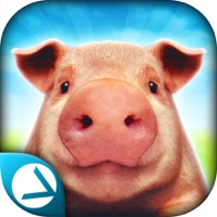 Codes for Pig Simulator 2015 Hack