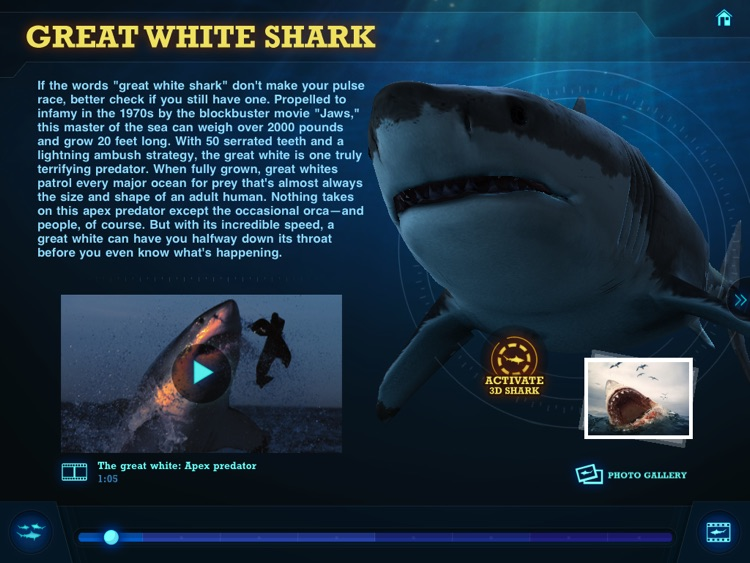 Ultimate Sharks Free screenshot-4